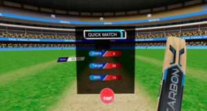 The Final Overs @ [DollarVR.com]
